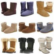 UGG Boots Wholesale,  UGG Australia Buy Wholesale UGGs,  cheap,  ugg