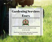 Gardening Services Essex | Garden Maintenance Services